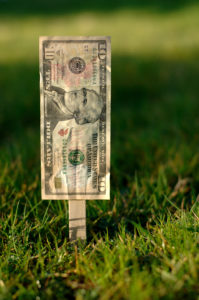 Ten dollar bill attached to a seed stake in a field of green grass; like a garden earning money requires work.
